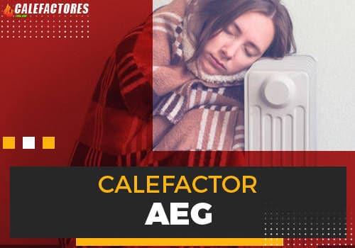 Mejores calefactor aeg