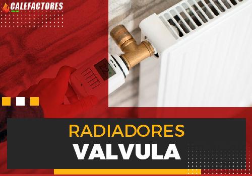 Mejores radiadores valvula