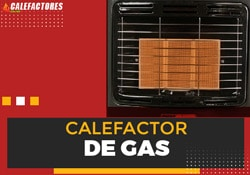 ejemplo-calefactor-de-gas