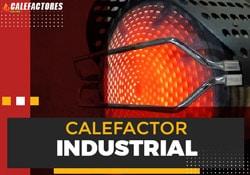 ejemplo-calefactor-industrial